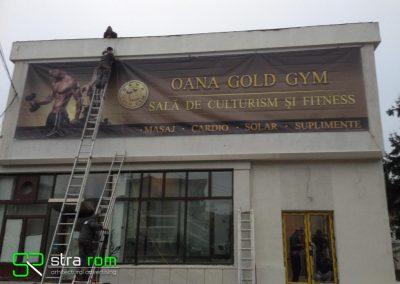 mesh gym