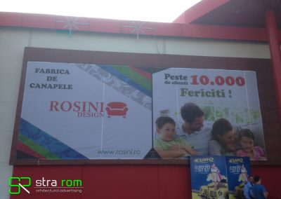 mesh rosini2